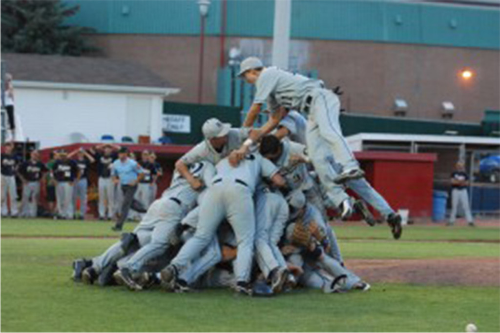 dogpile for post